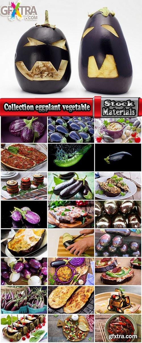Collection eggplant vegetable dish salad 25 HQ Jpeg