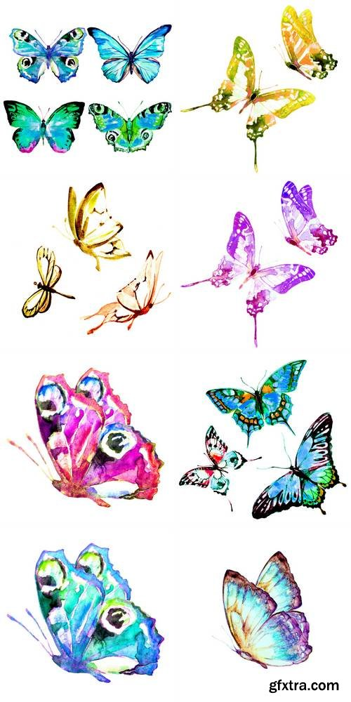 Watercolor Butterfly Isolated