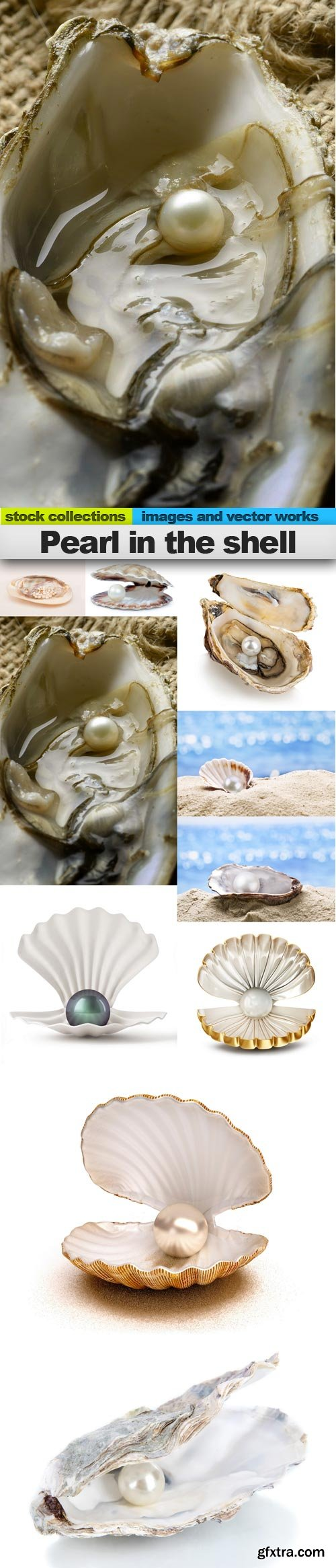 Pearl in the shell, 10 x UHQ JPEG
