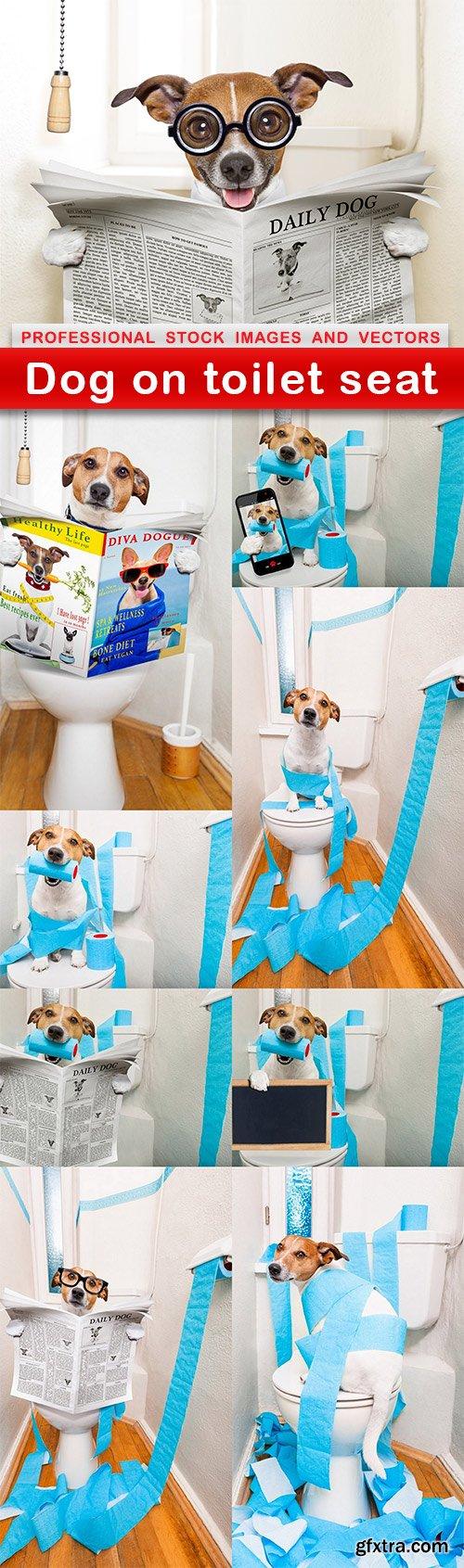 Dog on toilet seat - 9 UHQ JPEG