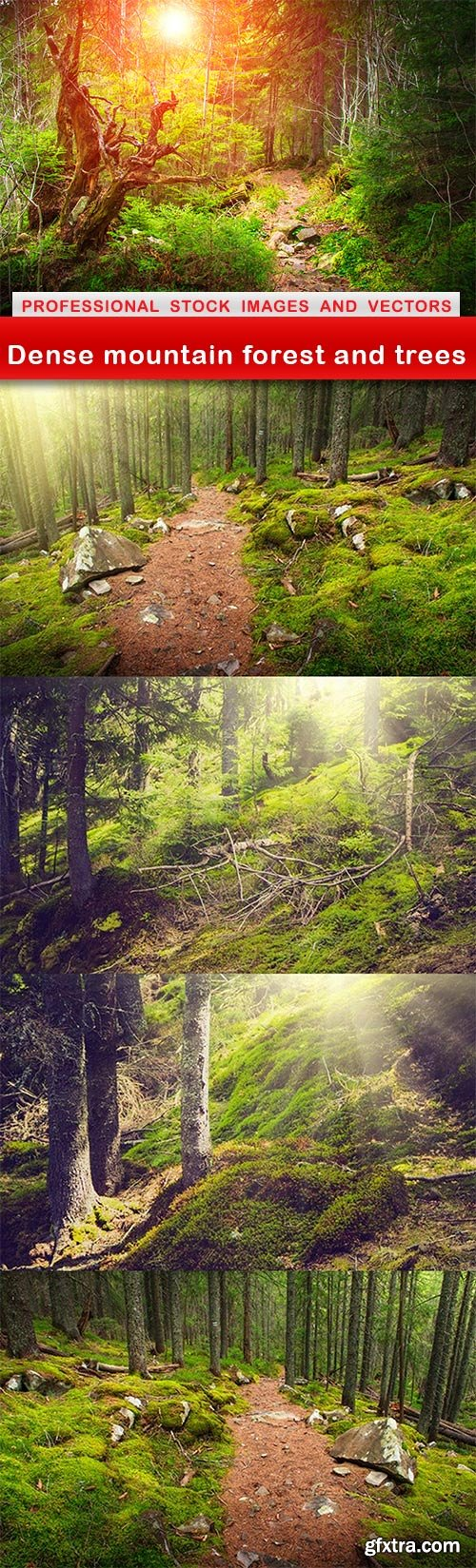 Dense mountain forest and trees - 5 UHQ JPEG