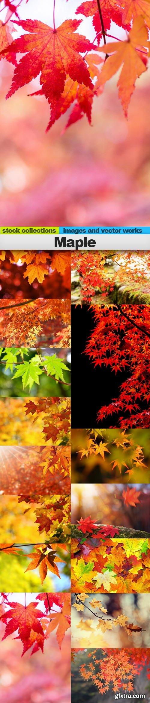 Maple, 15 x UHQ JPEG