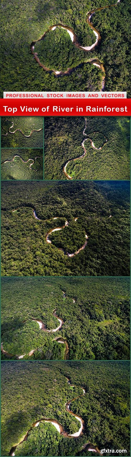 Top View of River in Rainforest - 7 UHQ JPEG
