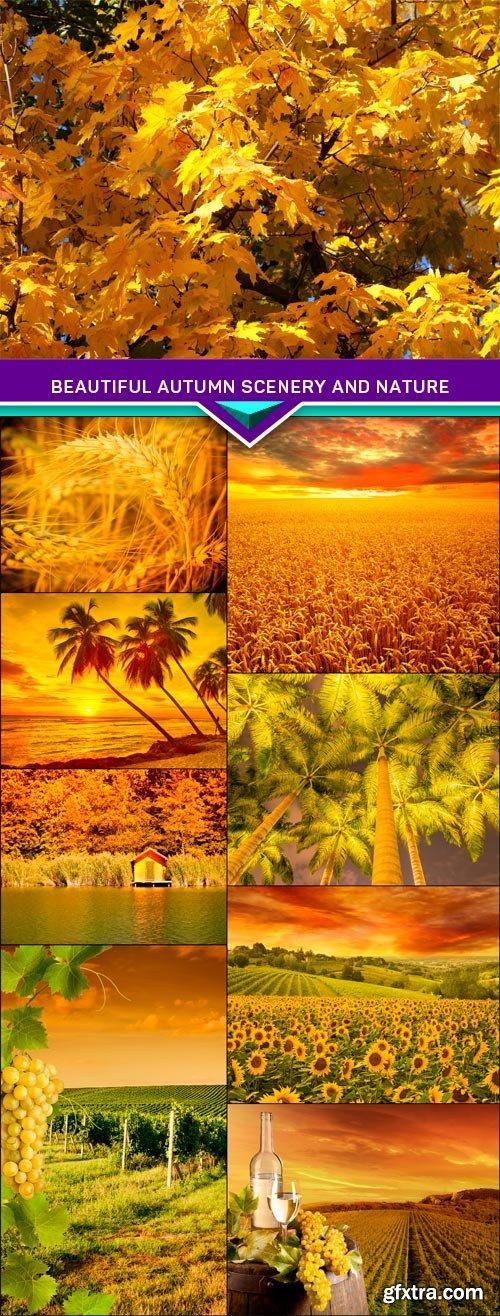 Beautiful autumn scenery and nature 9X JPEG