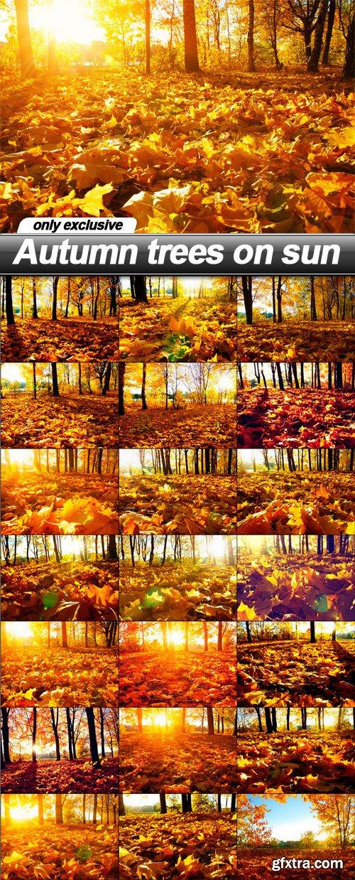 Autumn trees on sun - 21 UHQ JPEG