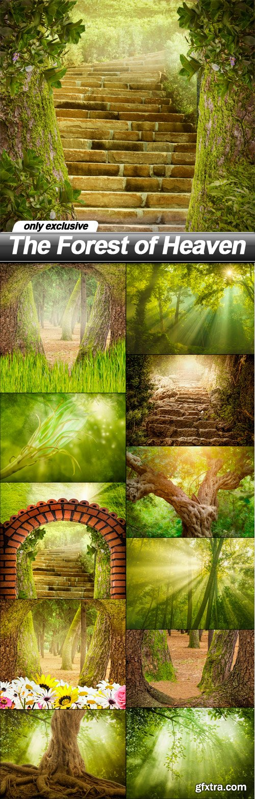The Forest of Heaven - 12 UHQ JPEG