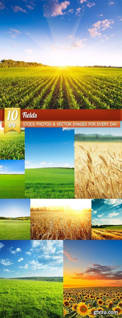 Fields, 10 x UHQ JPEG
