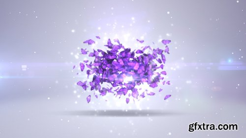 Videohive Butterfly Logo Revealer 7900048
