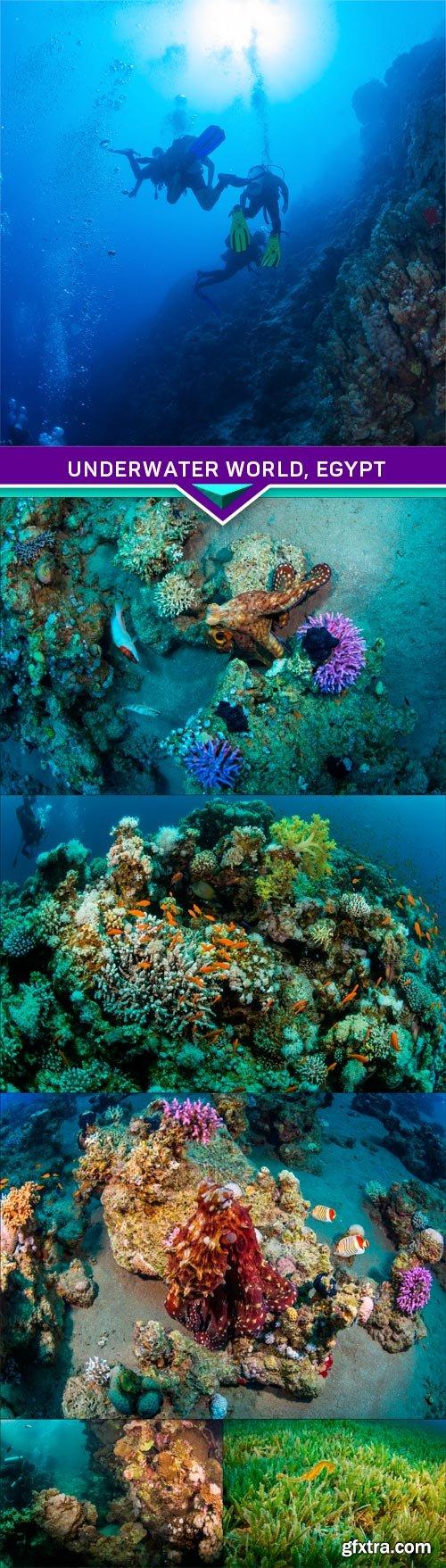 Underwater world, Egypt 6X JPEG