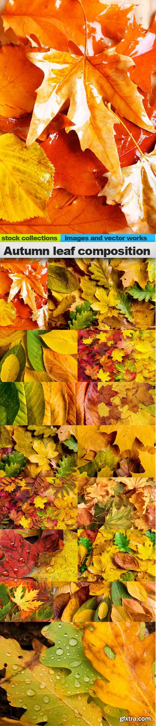 Autumn leaf composition, 15 x UHQ JPEG