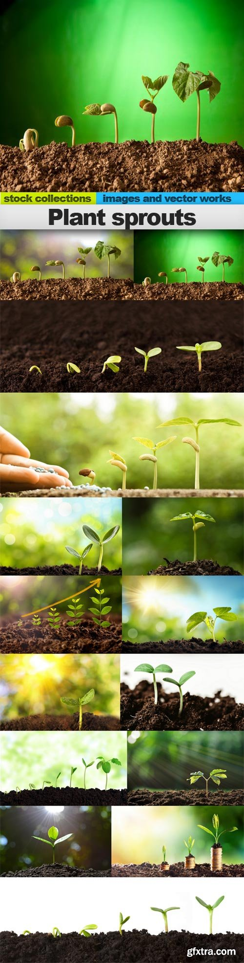 Plant sprouts, 15 x UHQ JPEG