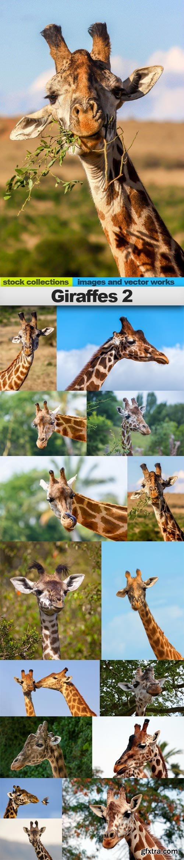 Giraffes 2, 15 x UHQ JPEG