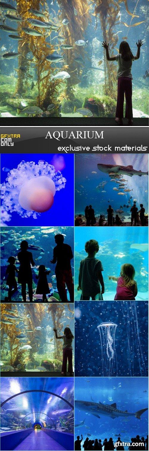 Aquarium - 8 JPEG