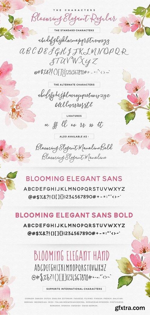 CM - The Blooming Elegant Font Trio 537891