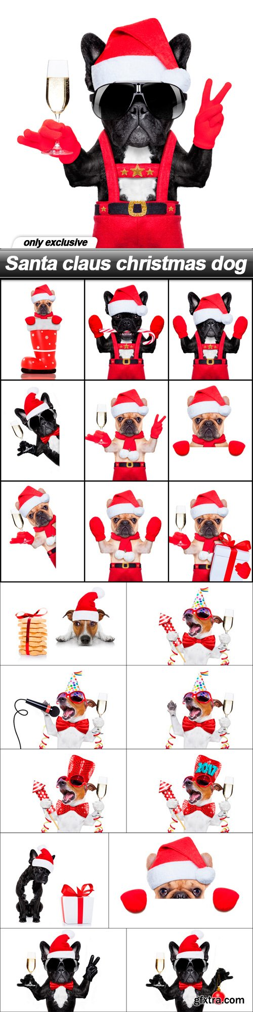Santa claus christmas dog - 20 UHQ JPEG