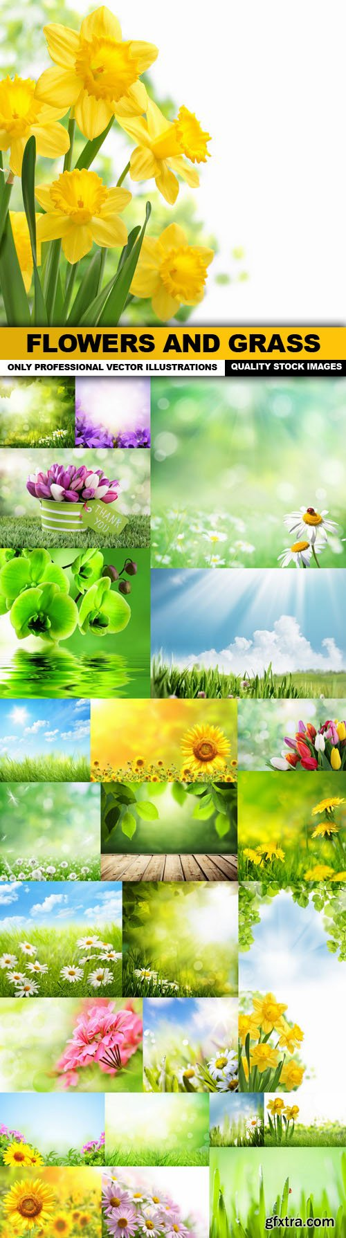 Flowers And Grass - 25 HQ Images