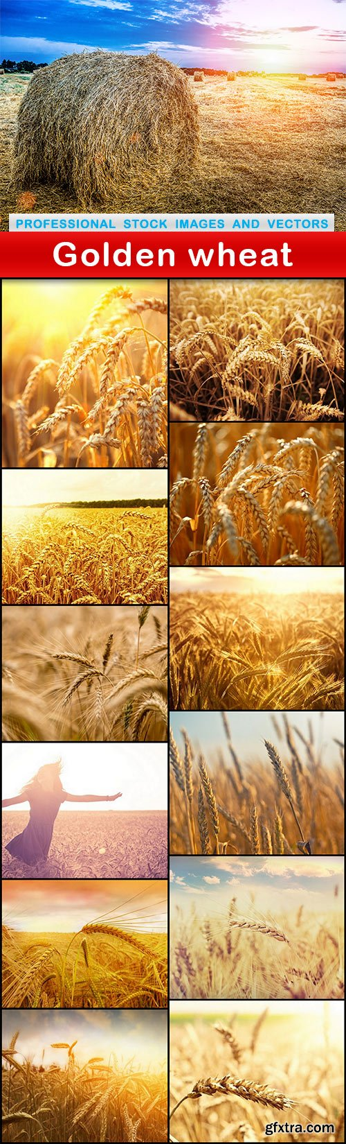 Golden wheat - 13 UHQ JPEG