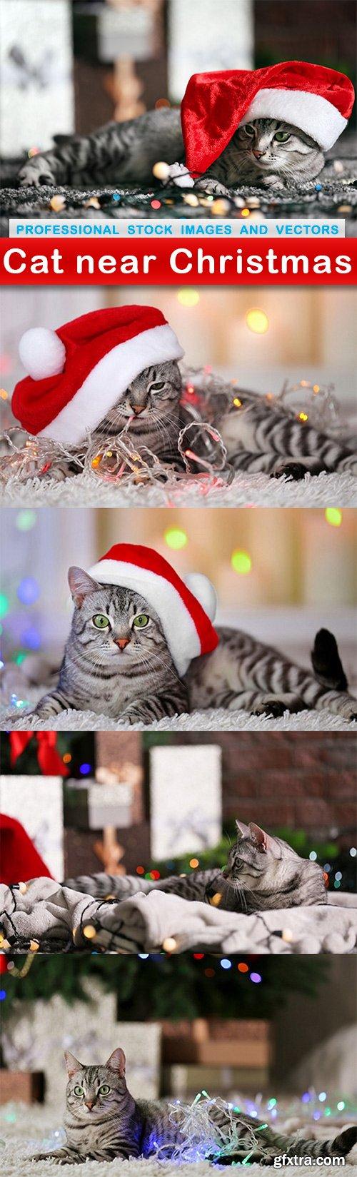 Cat near Christmas - 5 UHQ JPEG