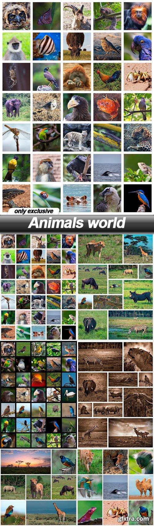 Animals world - 6 UHQ JPEG