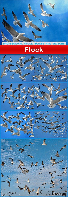 Flock - 8 UHQ JPEG