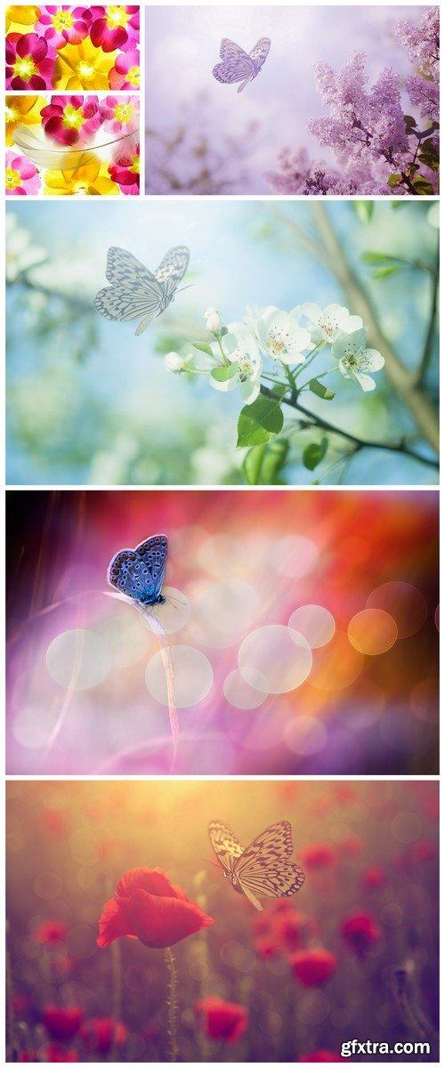 Beautiful blue butterfly, flowers background 6X JPEG