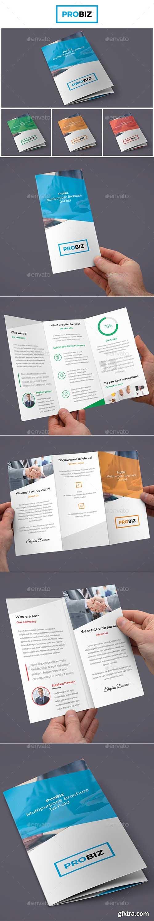 GR - ProBiz – Business and Corporate Brochure Tri-Fold 19017576