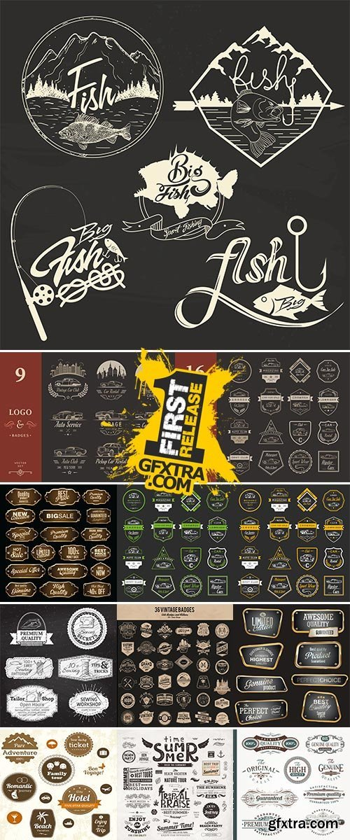 Stock Labels badges and emblems vector