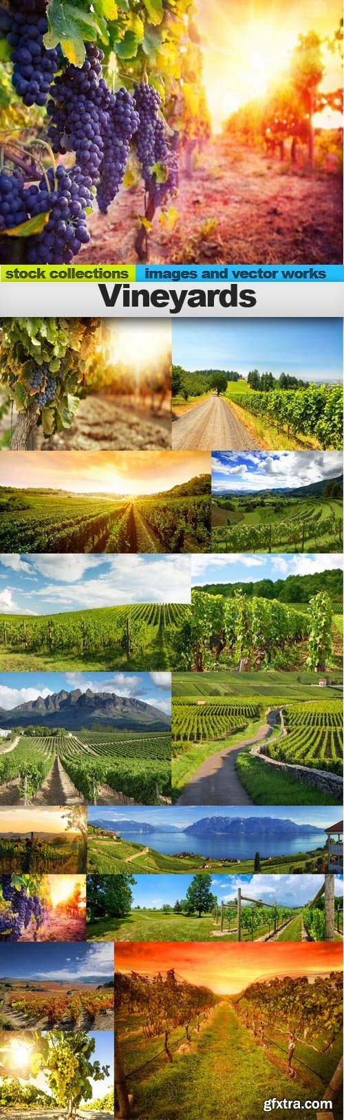 Vineyards, 15 x UHQ JPEG