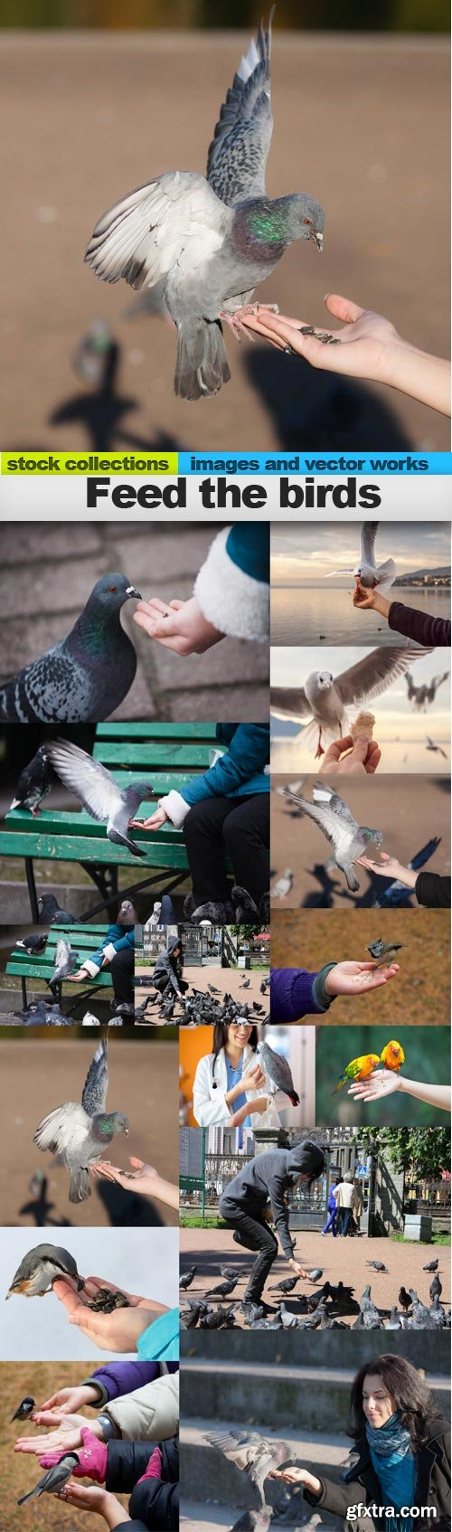 Feed the birds, 15 x UHQ JPEG