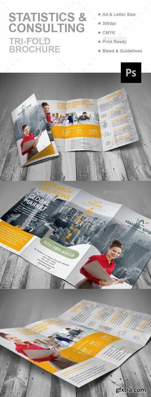 GraphicRiver - Statistics And Consulting Trifold Brochure 16151704