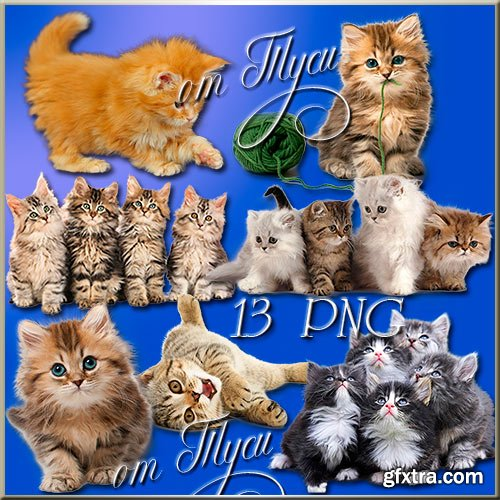 Clip Art - Fluffy kittens