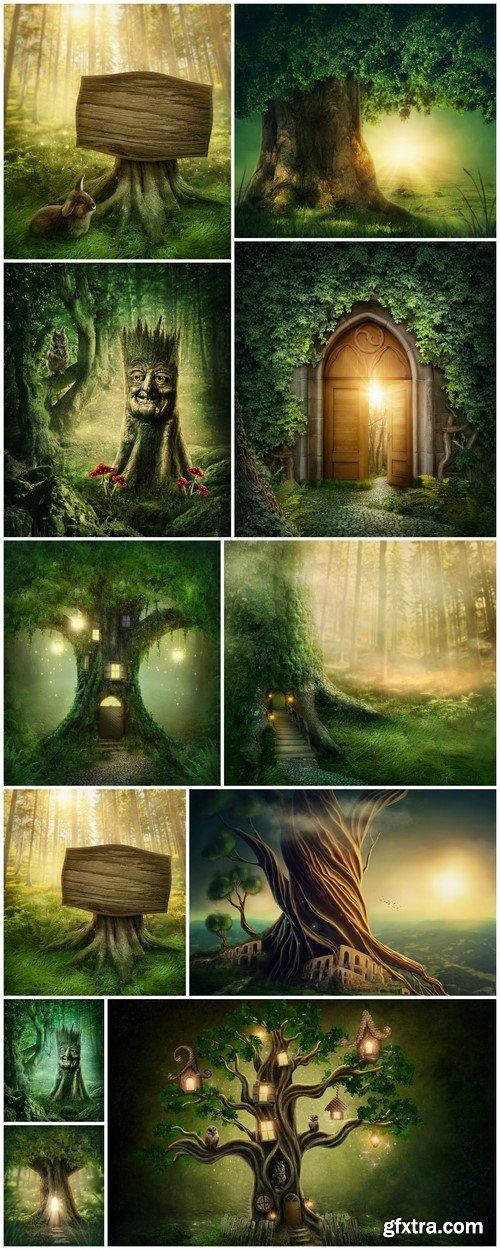Enchanted dark forest 11X JPEG