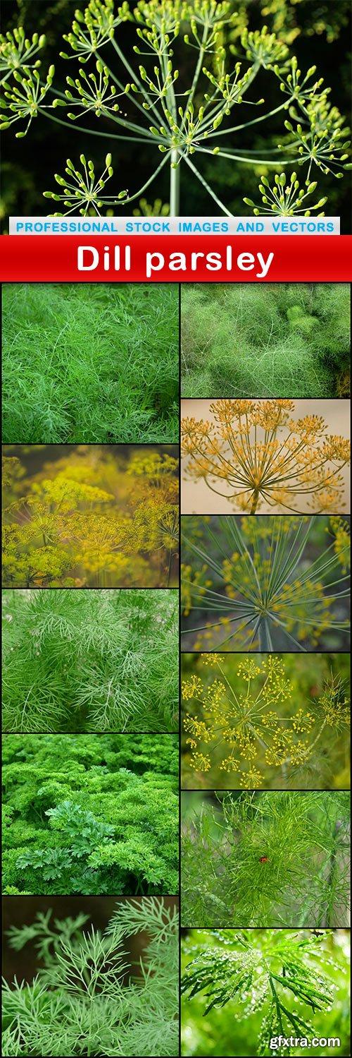 Dill parsley - 12 UHQ JPEG