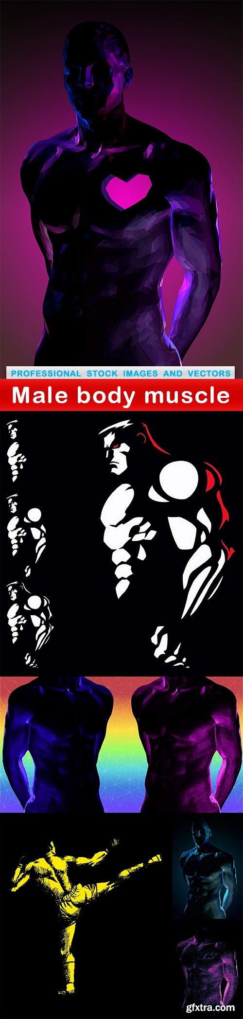 Male body muscle - 6 EPS