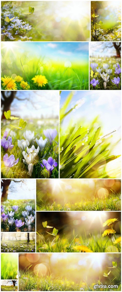 Easter spring flower background, yellow butterfly 13X JPEG
