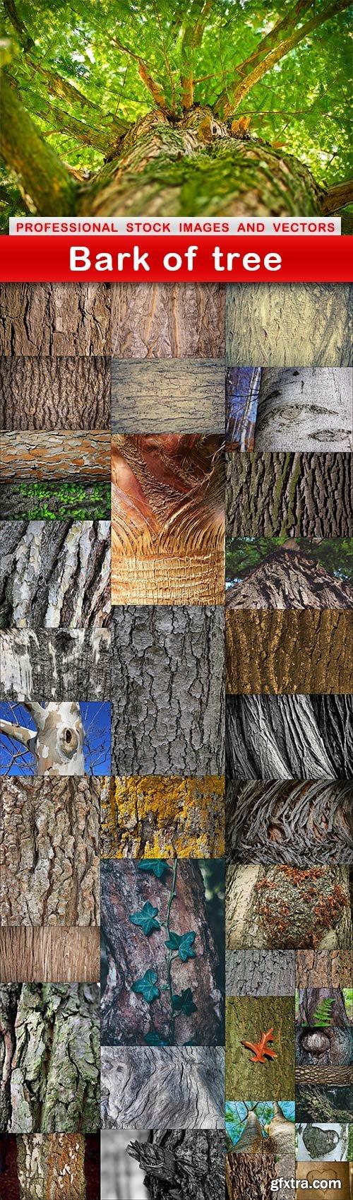 Bark of tree - 39 UHQ JPEG