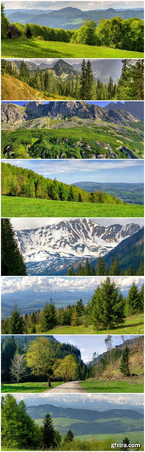 Spring mountain landscape Green meadow and forested hills 8X JPEG