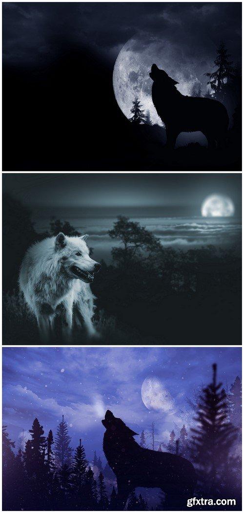 Wolf 3X JPEG