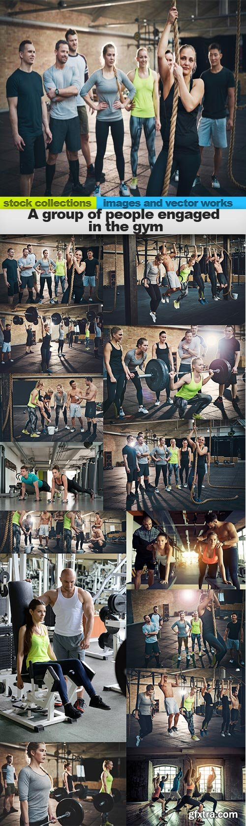 A group of people engaged in the gym, 15 x UHQ JPEG