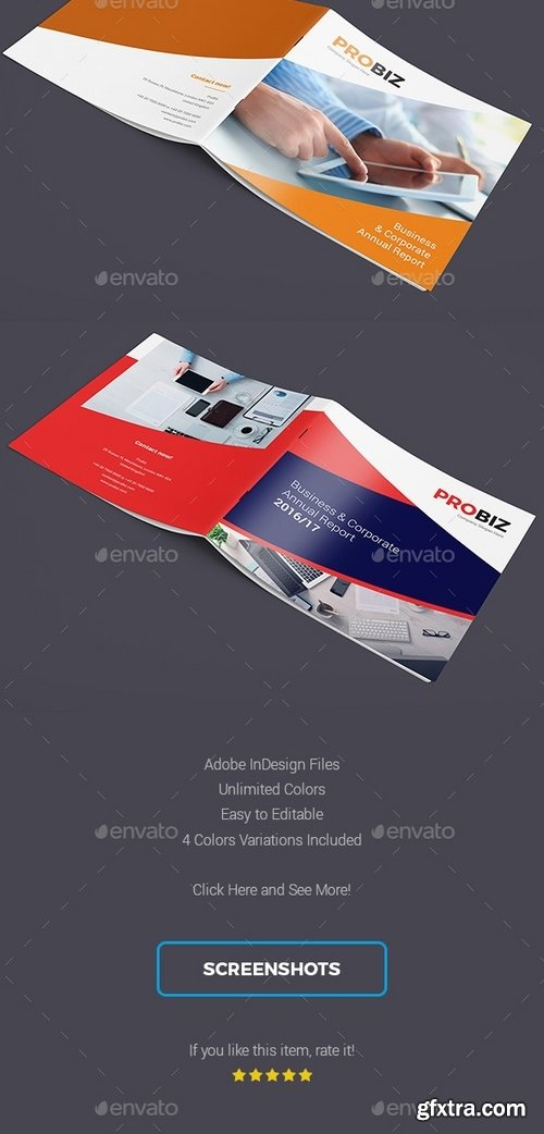 GraphicRiver - ProBiz – Business and Corporate Annual Report Square 19439606