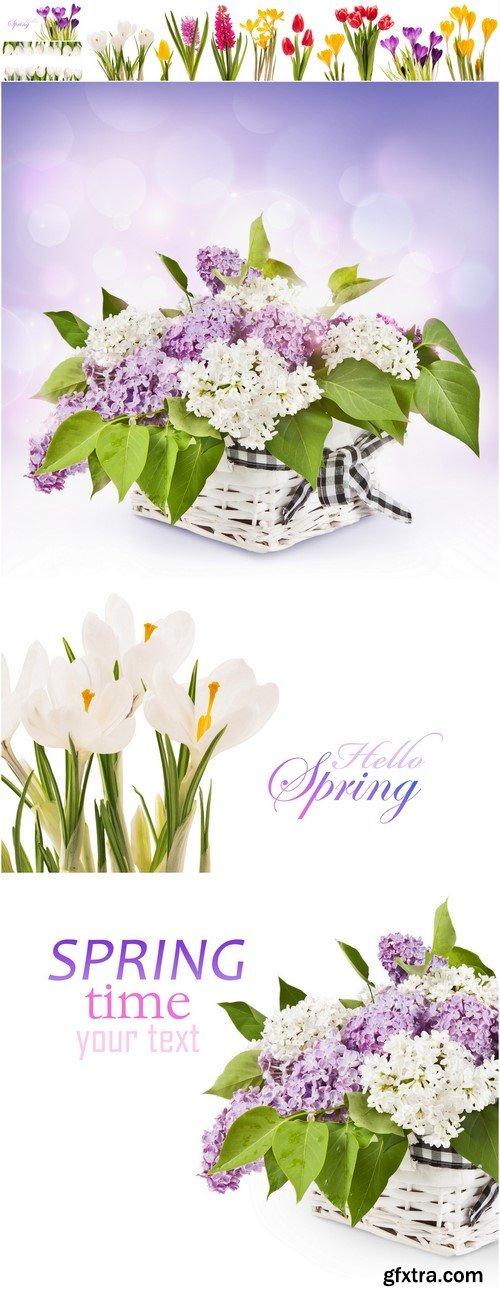 Lilac flowers in basket 6X JPEG