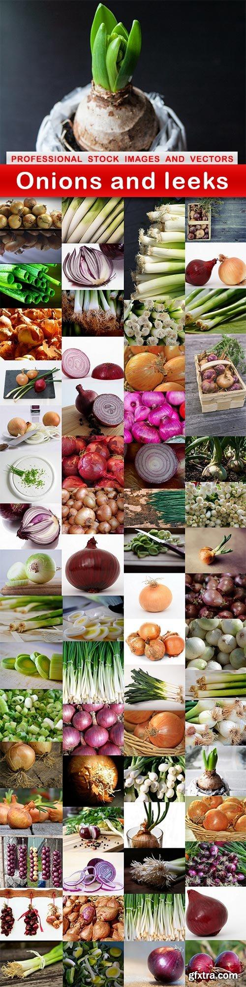 Onions and leeks - 65 UHQ JPEG