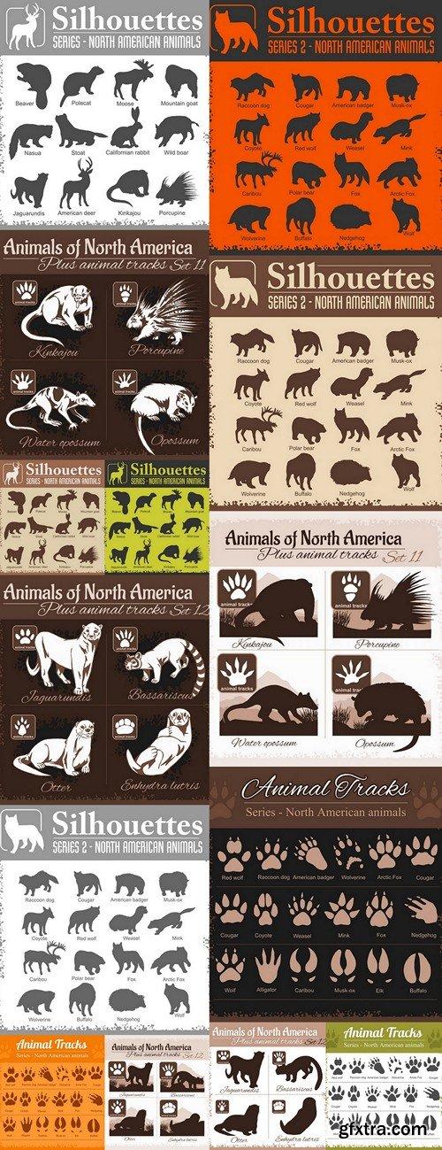 Animals and animal tracks, footprints