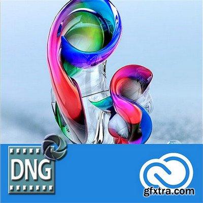 Adobe DNG Converter 9.10.0