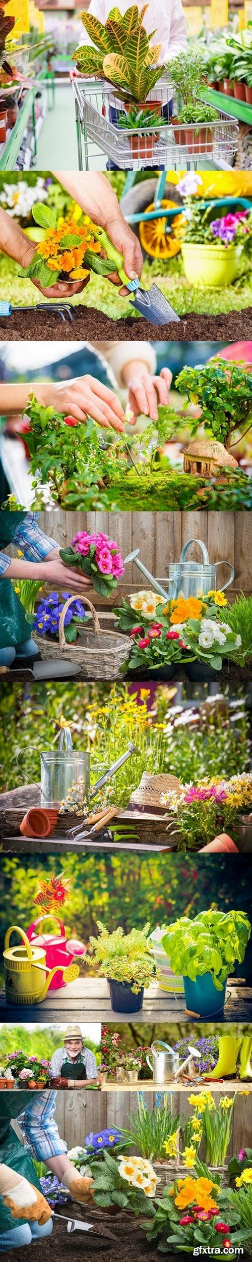 Gardening - Set Of Tools For Gardener And Flowerpots In Sunny Garden 2