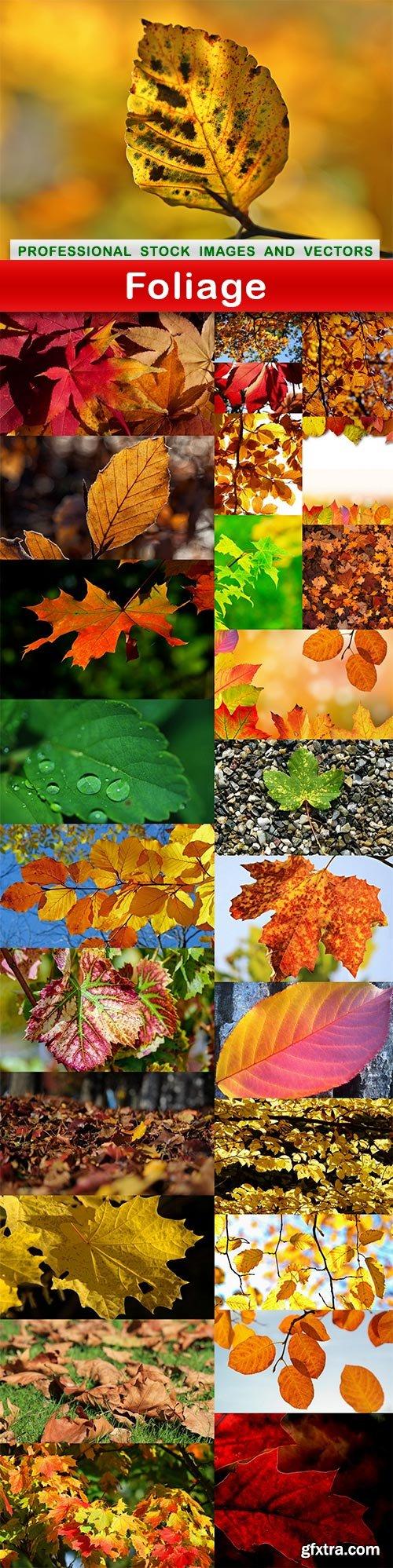 Foliage - 27 UHQ JPEG