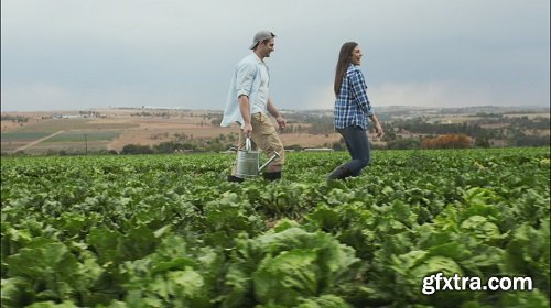 Young happy lifestyle farming couple carrying water can walking through crop and inspecting produce before harvest
