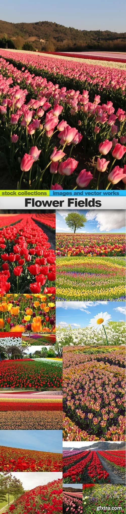 Flower Fields, 15 x UHQ JPEG