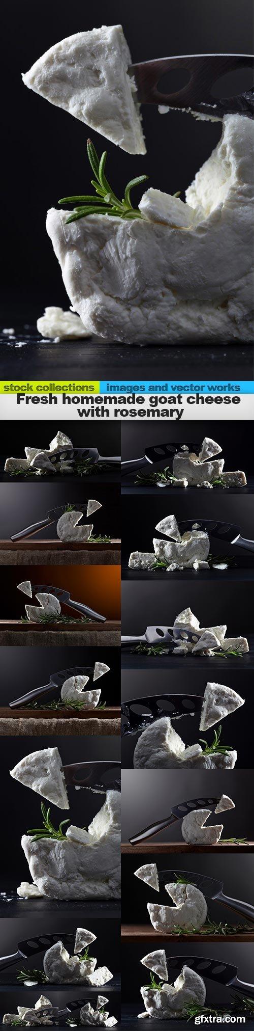 Fresh homemade goat cheese with rosemary, 15 x UHQ JPEG