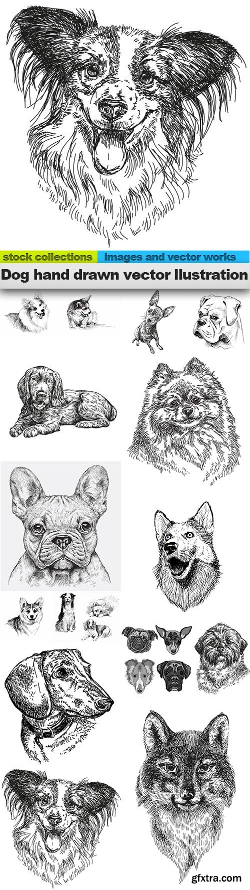 Dog hand drawn vector llustration, 15 X EPS